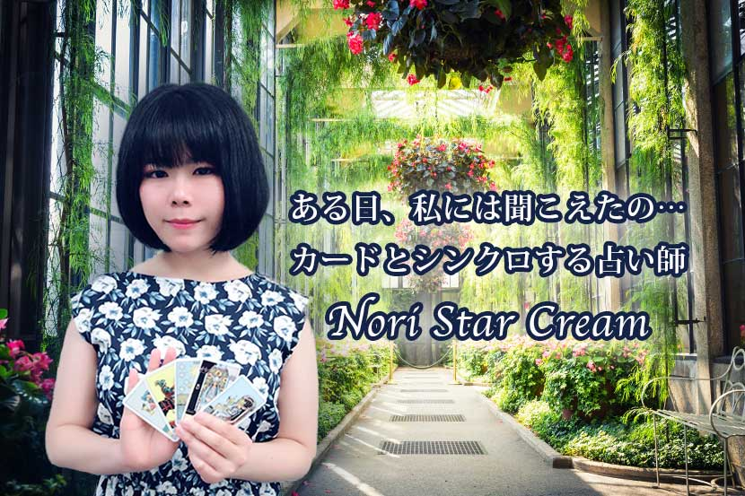 Nori Star Cream先生
